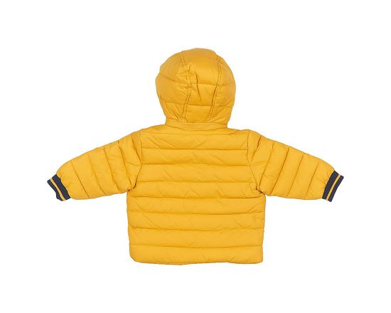 Jacket With Detachable Hood